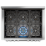 6-Burner Gas Hob (Inc. Dual-Control Wok Burner)