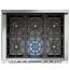 6-Burner Gas Hob (Inc. Dual-Control Wok Burner)